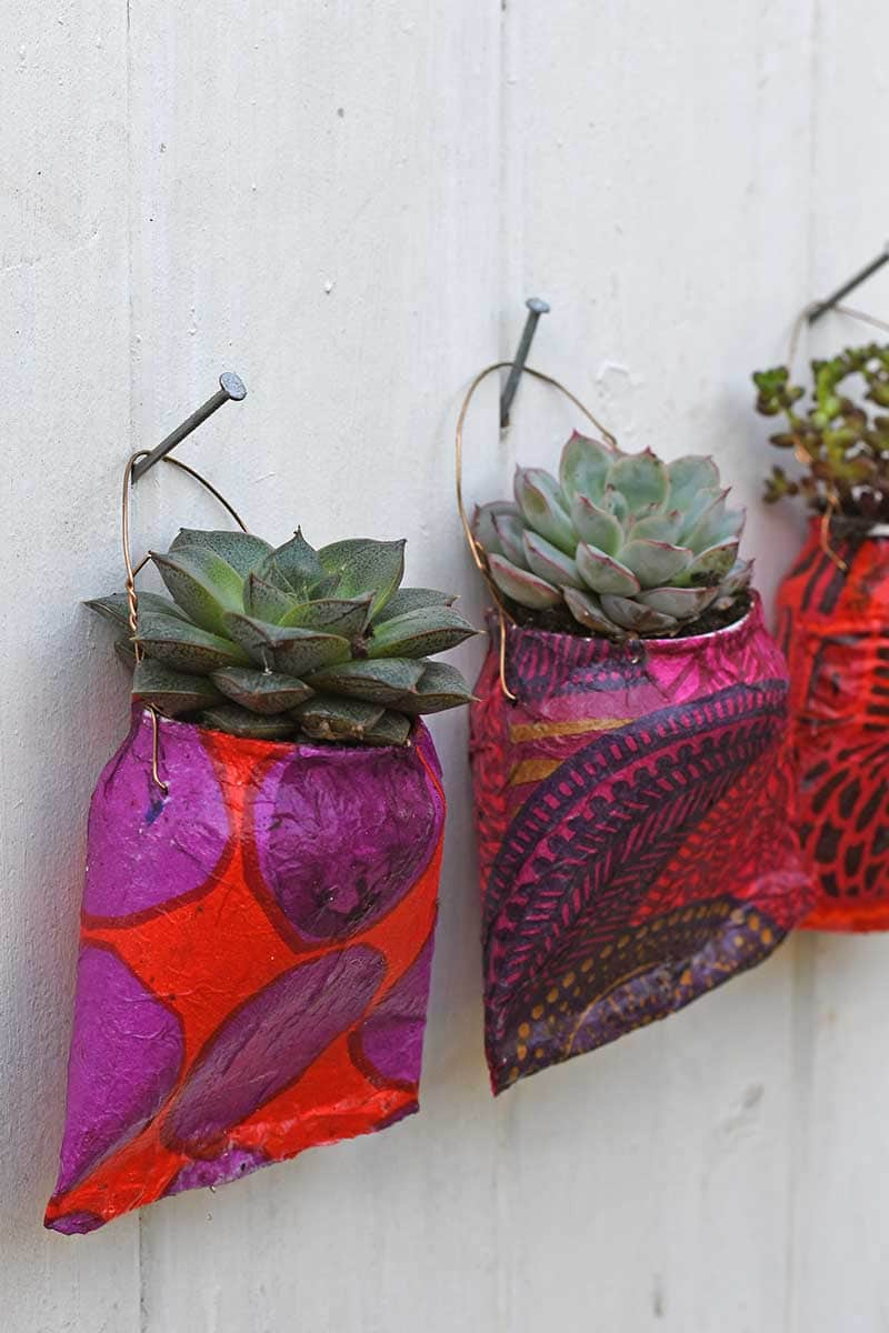 Soda can planters hanging on nails