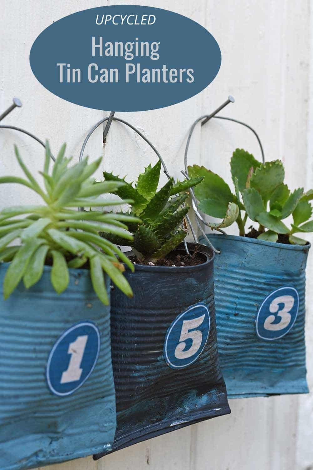 Upcycled hanging succulent planters